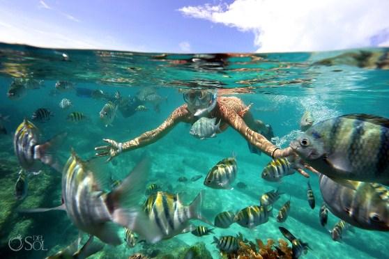 En El Garrafón se puede disfrutar de tocar los peces con sus propias manos.